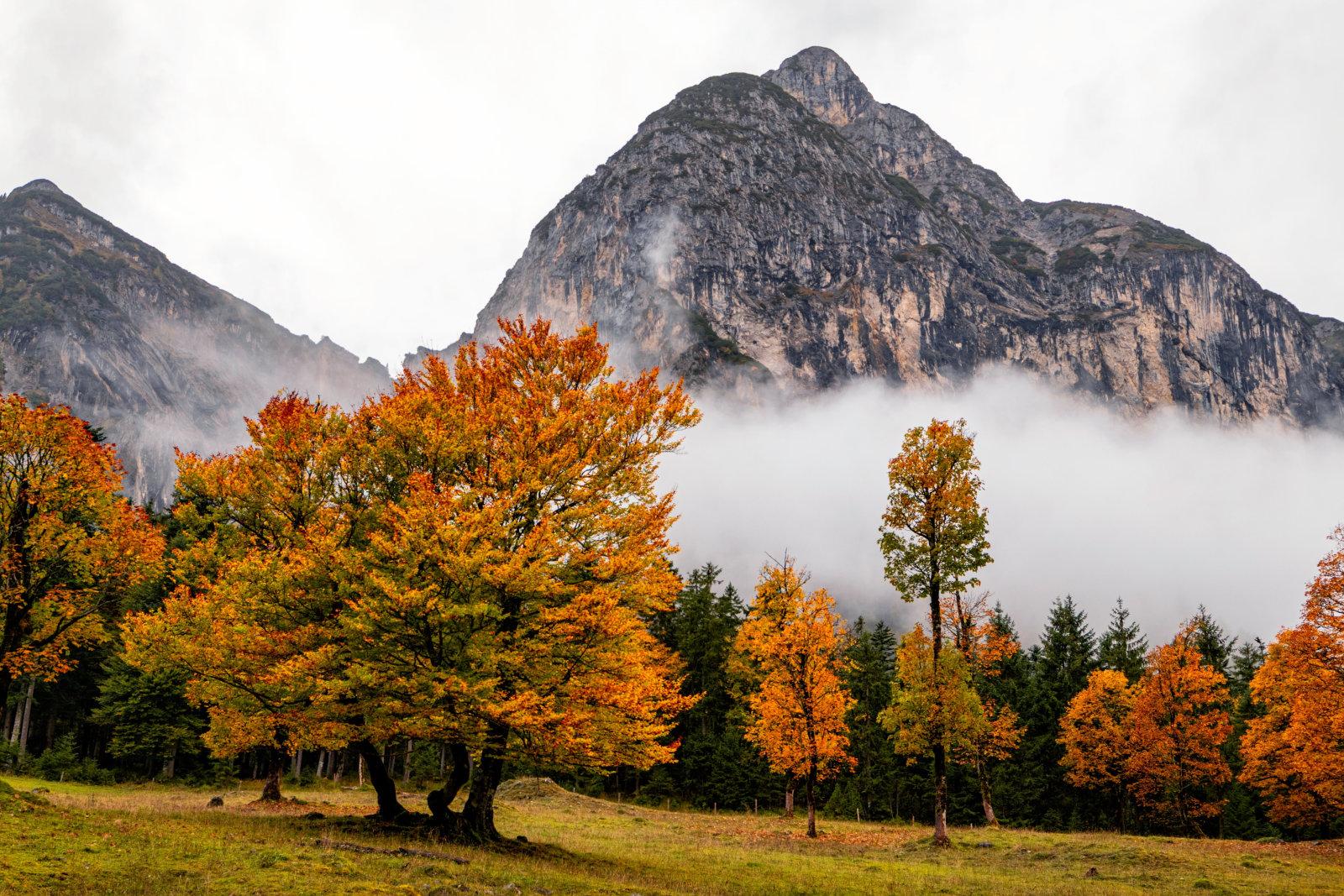 Der Indian Summer in Österreich ist perfekt für idyllische Wanderungen durch nebelverhangene Berge und farbenfrohen Wälder