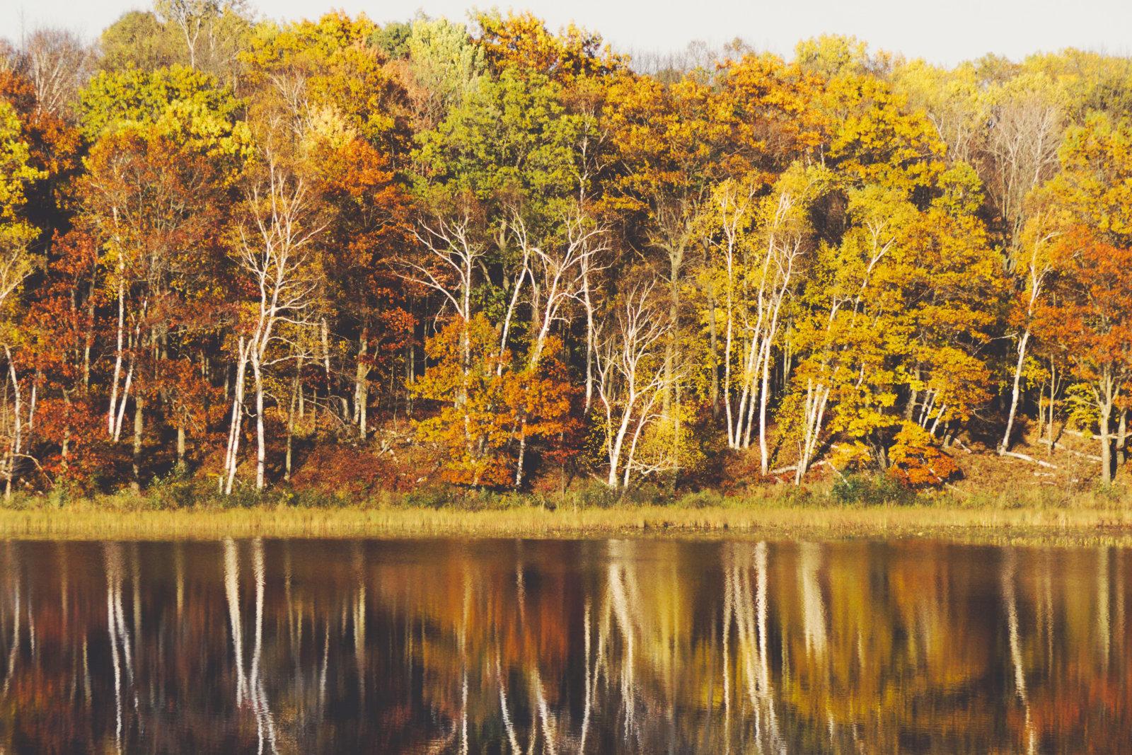 Im Herbst doppelt so schön: Das bunte Laub spiegelt sich in den vielen Bergseen in der Steierischen Krakau