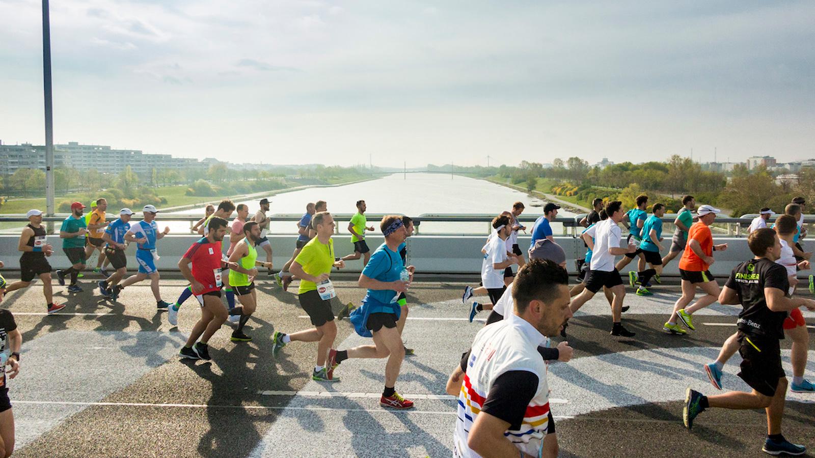 Marathonläufe gehören für eine Metropole zum guten Ton: Vienna City Marathon,