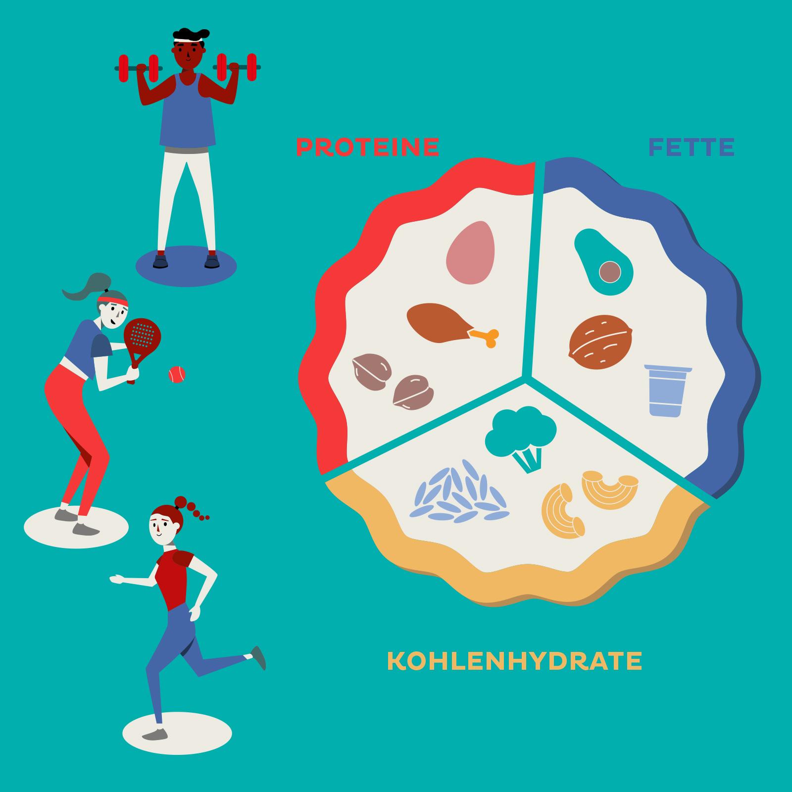 Unsere Ernährung setzt sich aus drei Gruppen von Nahrungsmitteln zusammen.