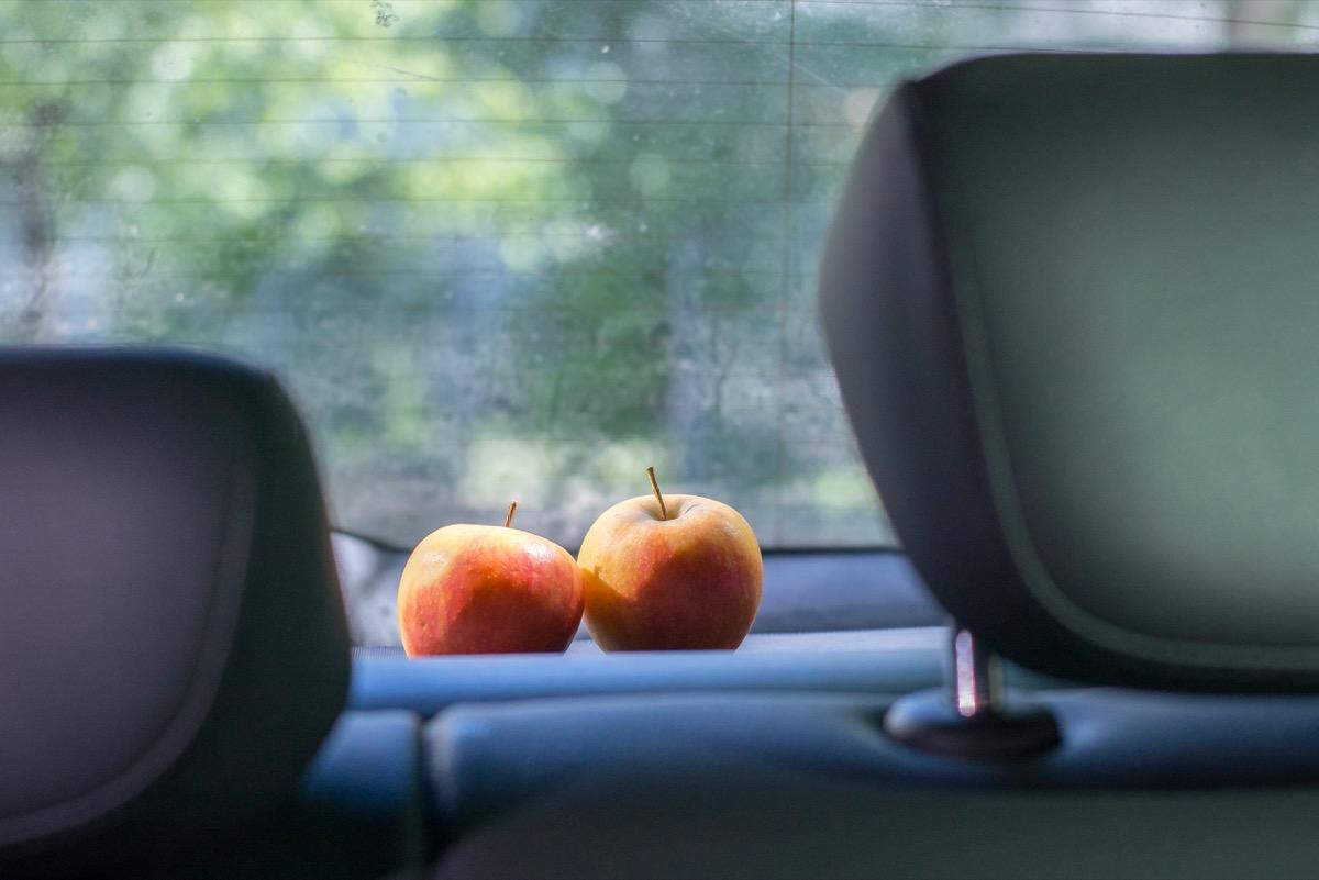 Schon Schiller liebte Äpfel in seinem Schreibtisch. Zuhause und im Auto bewirken sie Wunder gegen schlechte Gerüche.