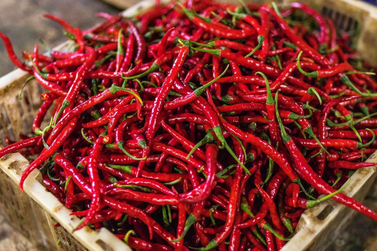 """Mit dem Wort """"Chili"""" werden scharfe Paprikasorten bezeichnet."""