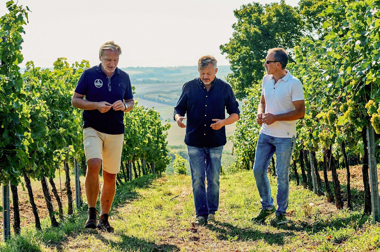 Christoph Körner (Mitte) ist Winzer aus Leidenschaft und kennt die Falkensteiner Region seit seiner Kindheit. An seiner Seite: die Weingut-Partner und Jugendfreunde Georg Klein (links) und Matthias Marchesani
