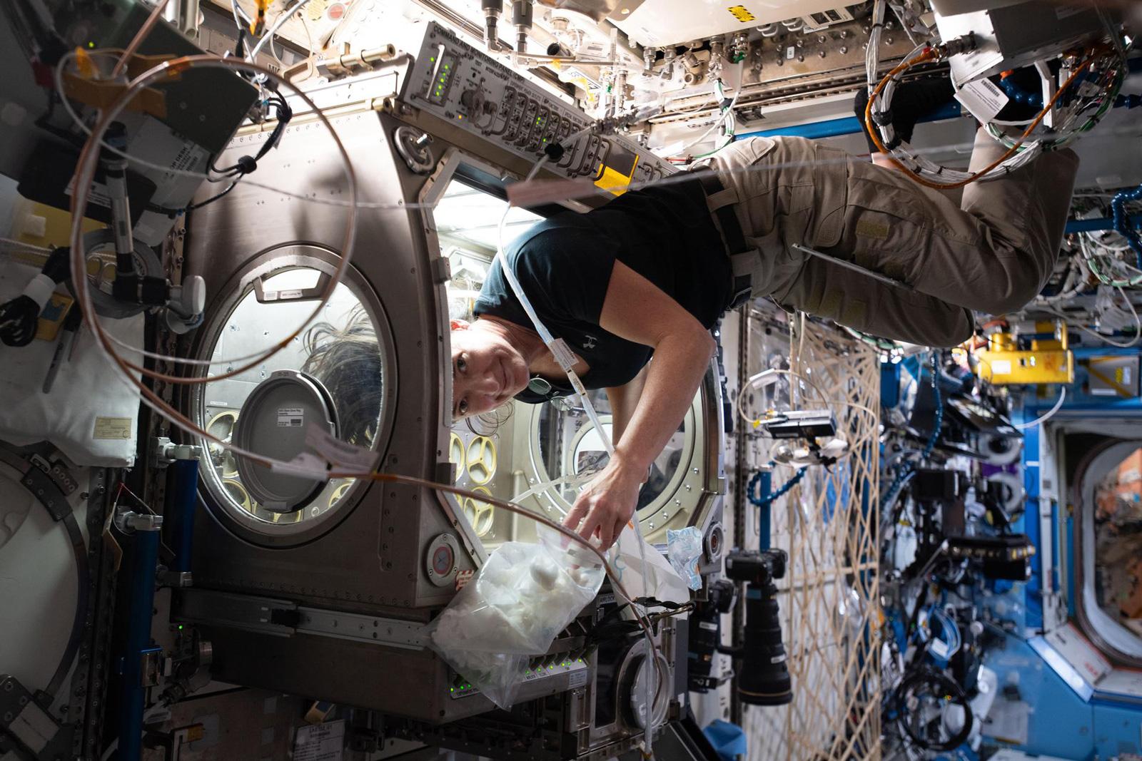 Aufräumen in einem Labor-Modul auf der Internationalen Raumstation ISS