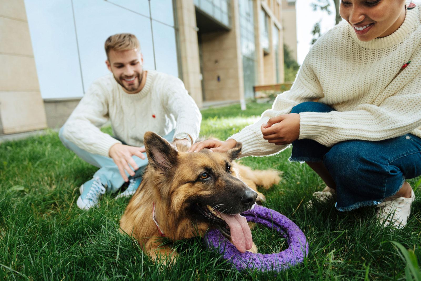 Gute Gesprächsbasis: Hunde fördern soziale Kontakte.