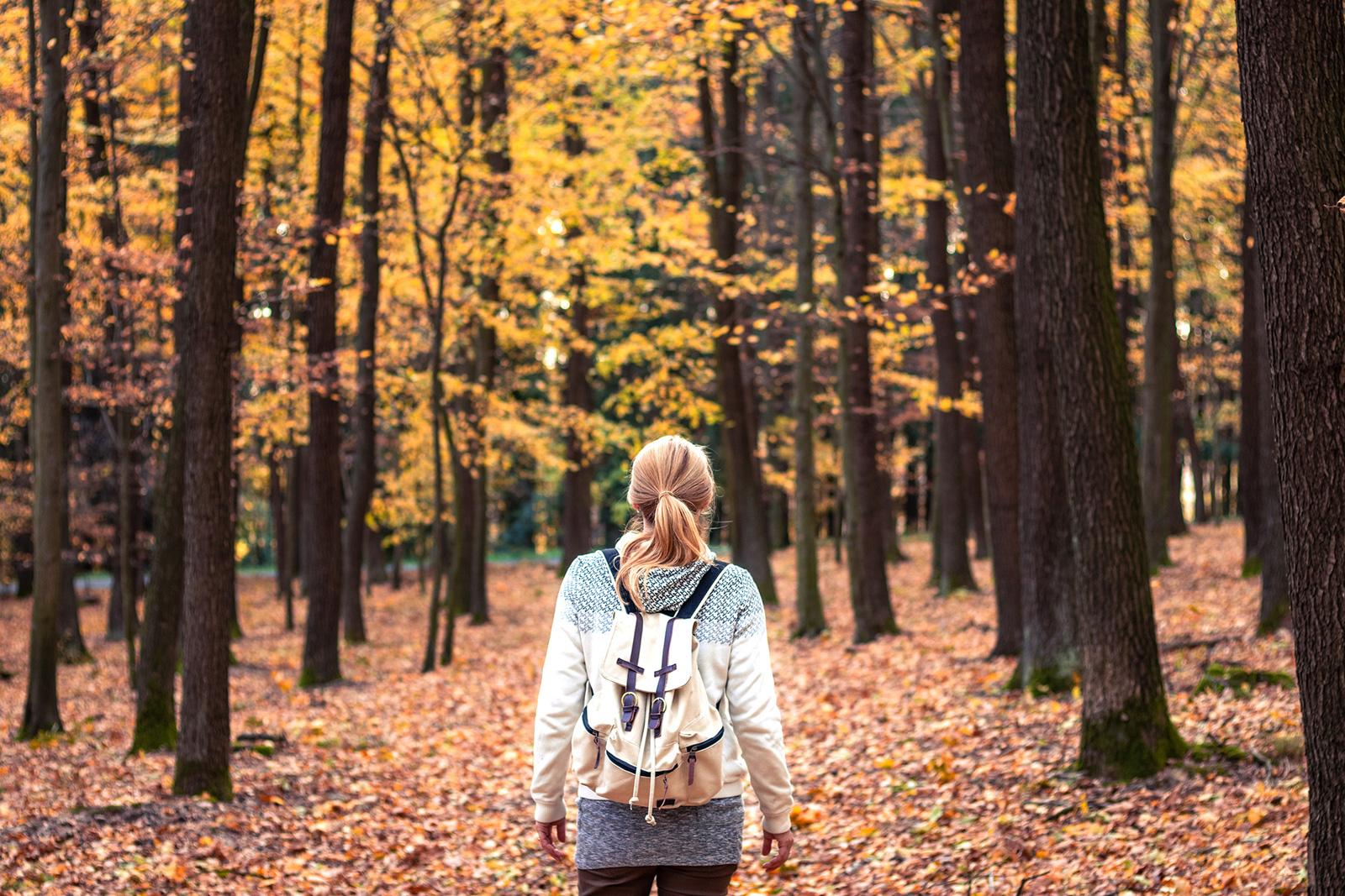 Wald zieht Kohlendioxisd aus der Luft und bringt Sauerstoff in die Lungen.