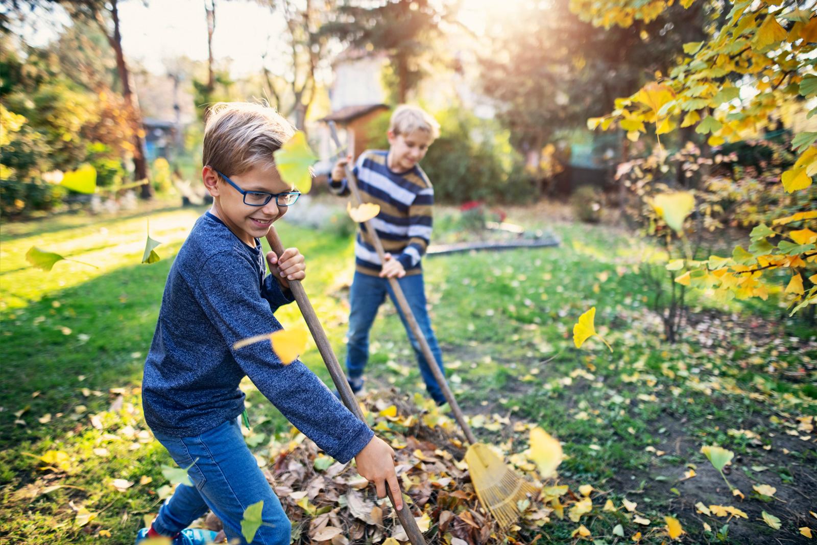 Laub sollte regelmäßig vom Rasen entfernt werden.