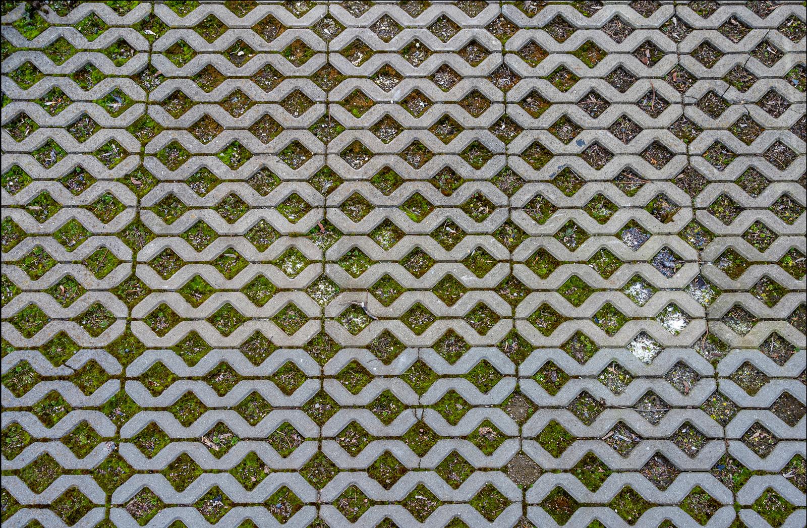 Rasengittersteine: dekorative Muster mit einem Hauch von Grün
