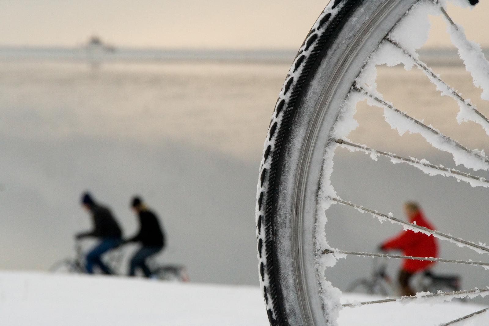 Deine Fahrradreifen benötigen im Winter ein besonders ausgeprägtes Profil.