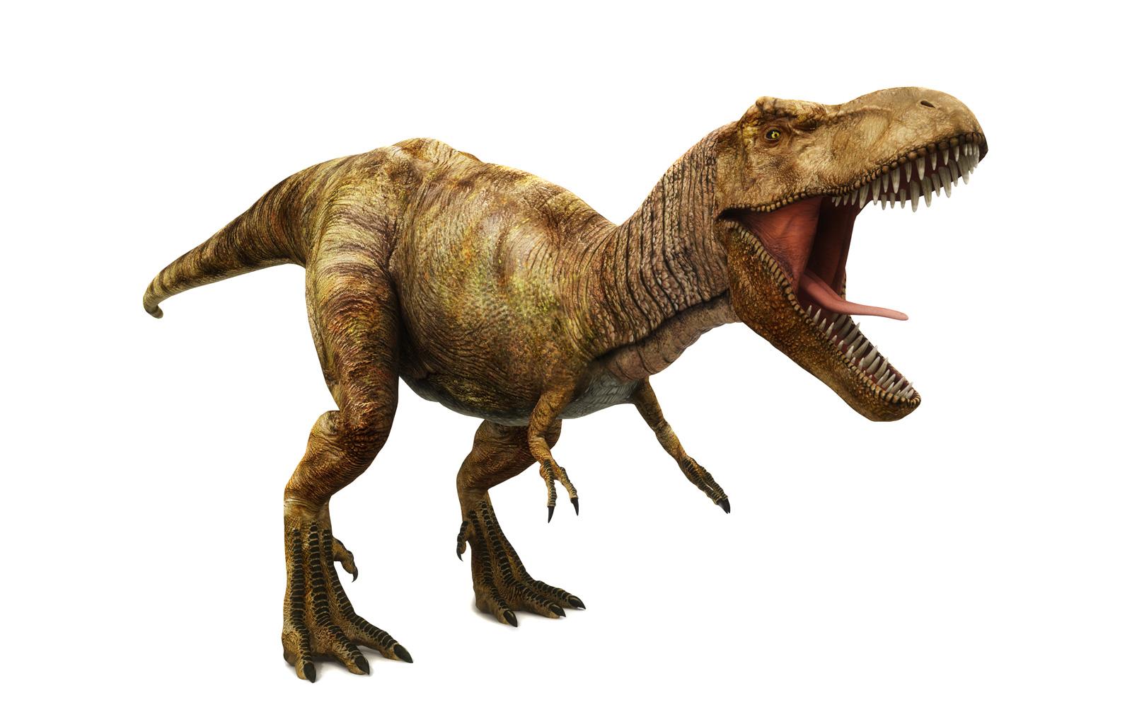 Wie im Kino: Tyrannosaurus Rex