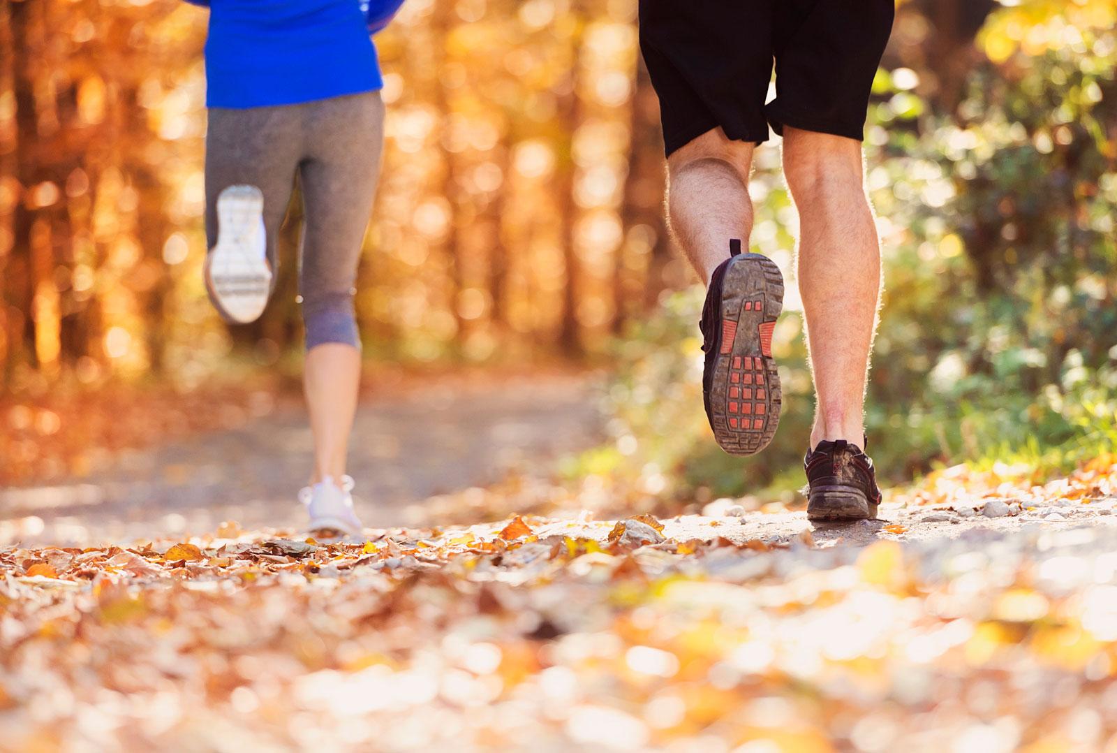Sport hilft beim Stoffwechsel und kann präventiv gegen Krebserkrankungen wirken.