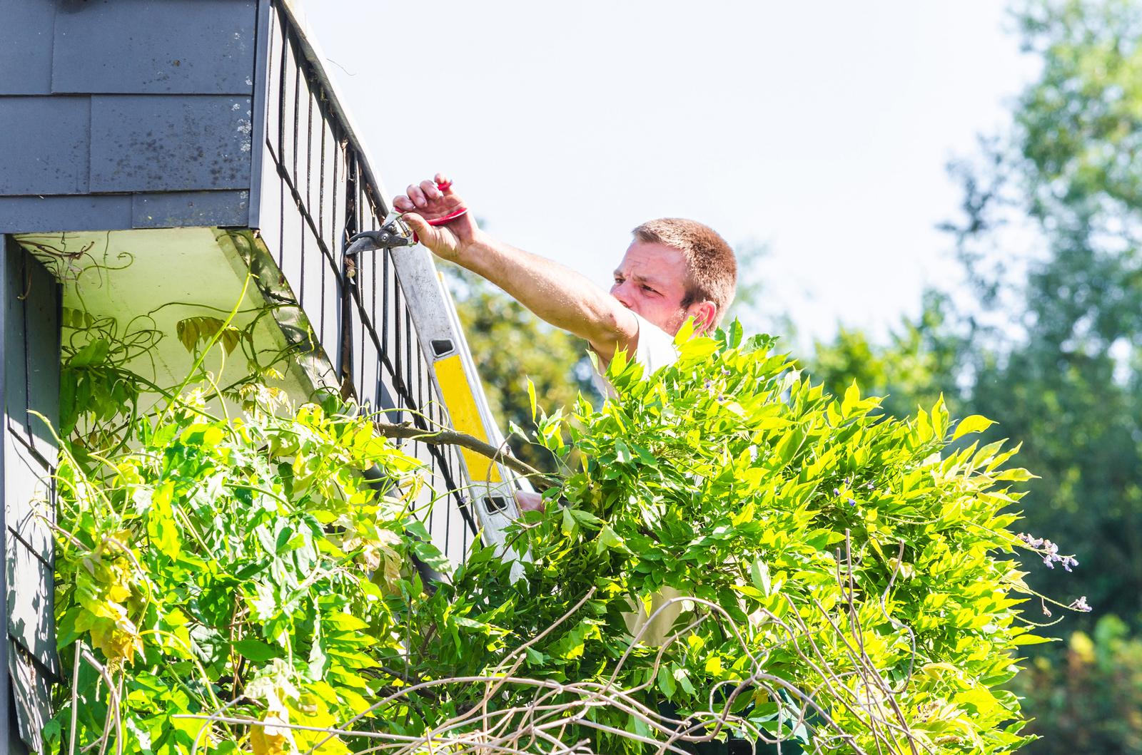 Nicht ohne Pflege: Eine regelmäßige Kontrolle kann Schäden am Haus verhindern.