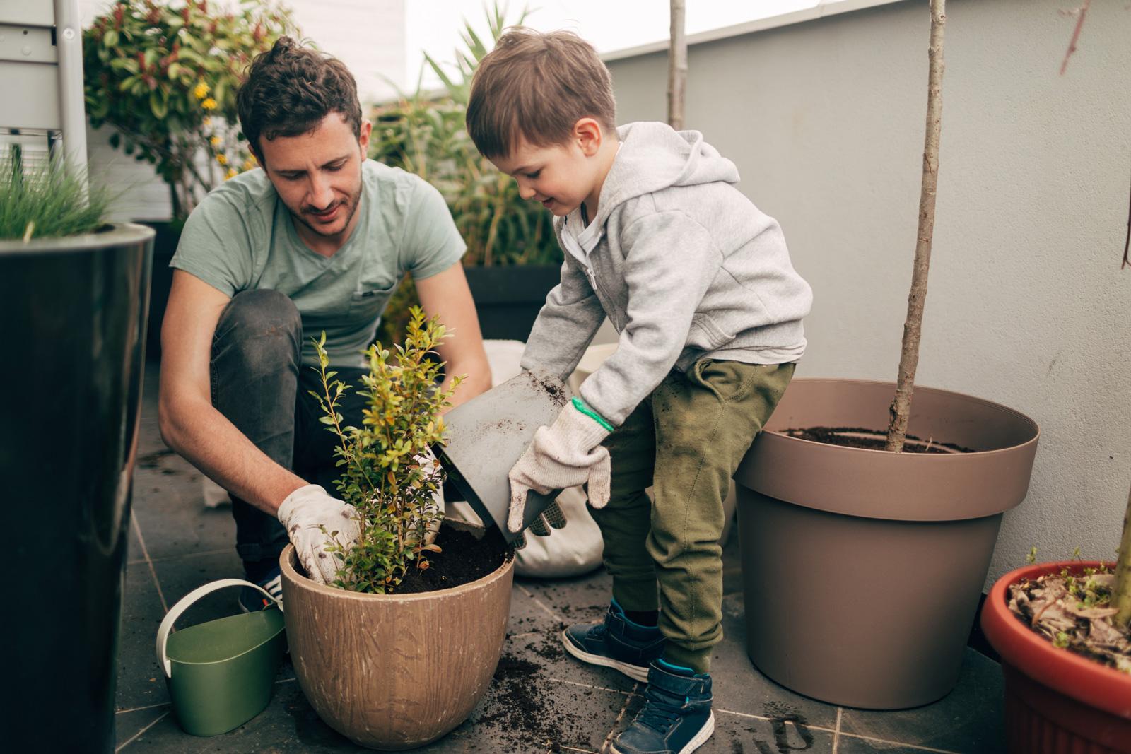 In einem größeren Topf stehen Pflanzen auf dem Boden stabiler.