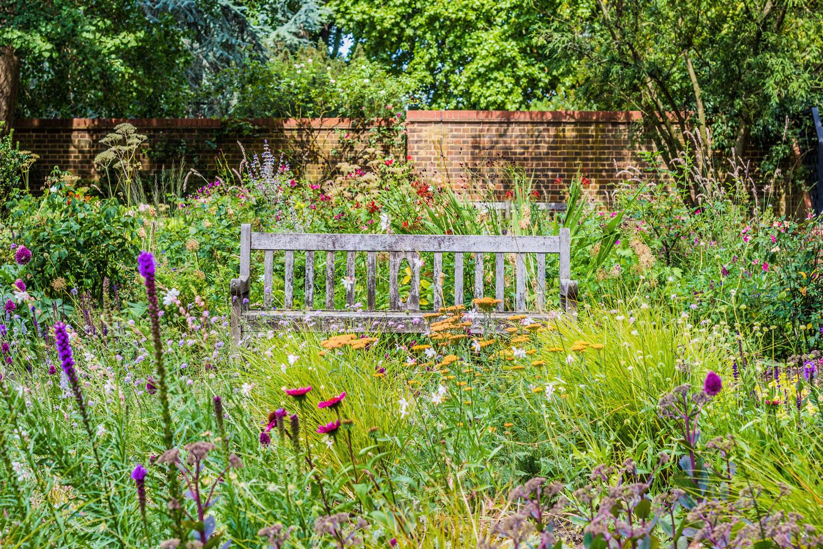 Blumenwise statt Rasen: Naturgarten