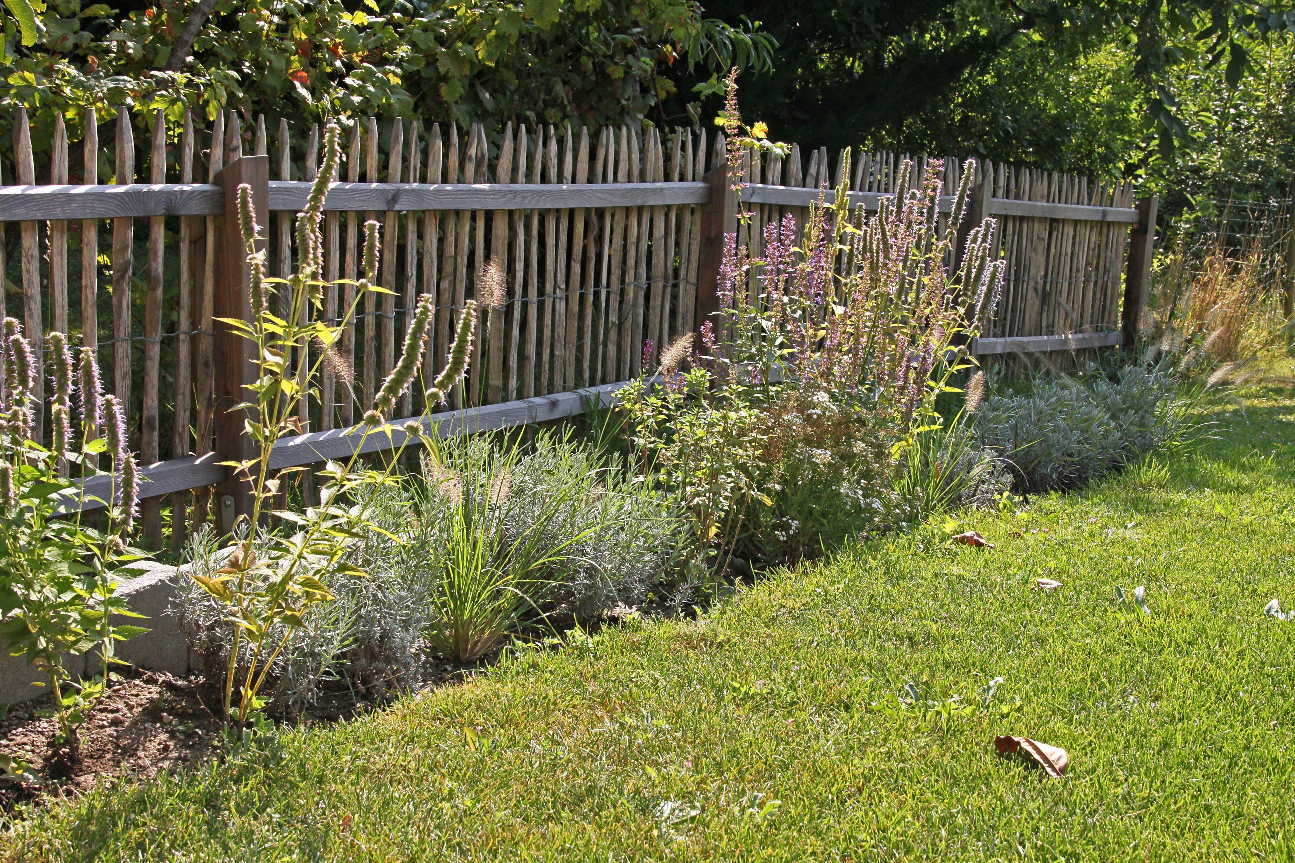 Natürlich: Zu einem ländlichen Garten passen rustikale Holzzäune kombiniert mit Stauden und Gräsern.