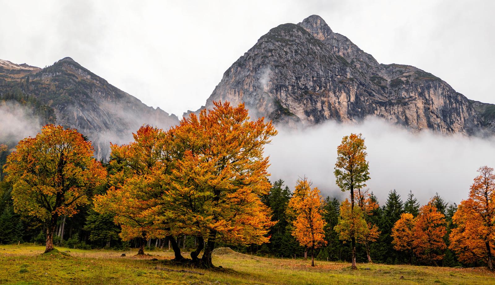 Herbststimmung im Kawendel
