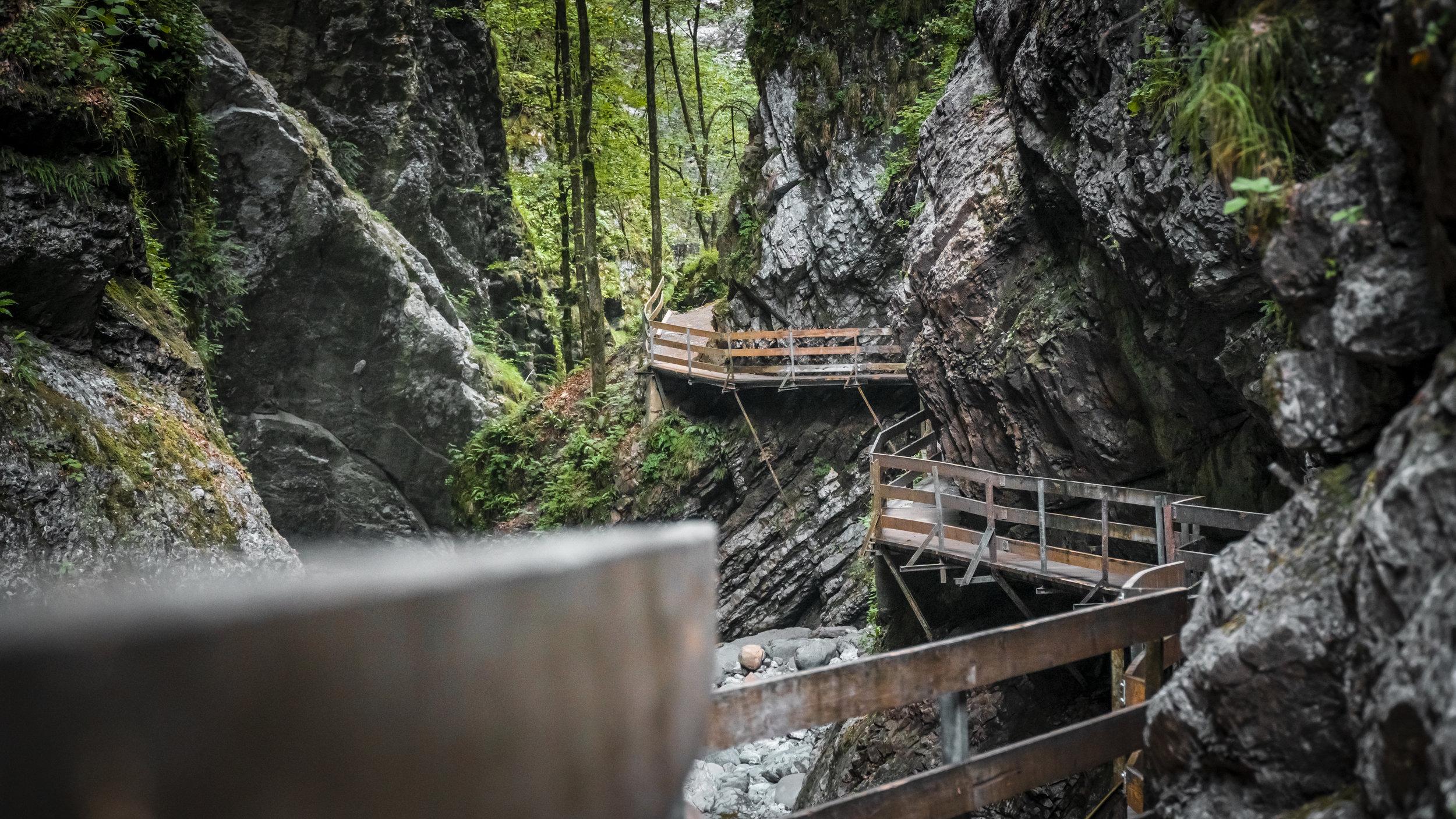 Unfassbar schön ist die Rappenlochschlucht in Vorarlberg