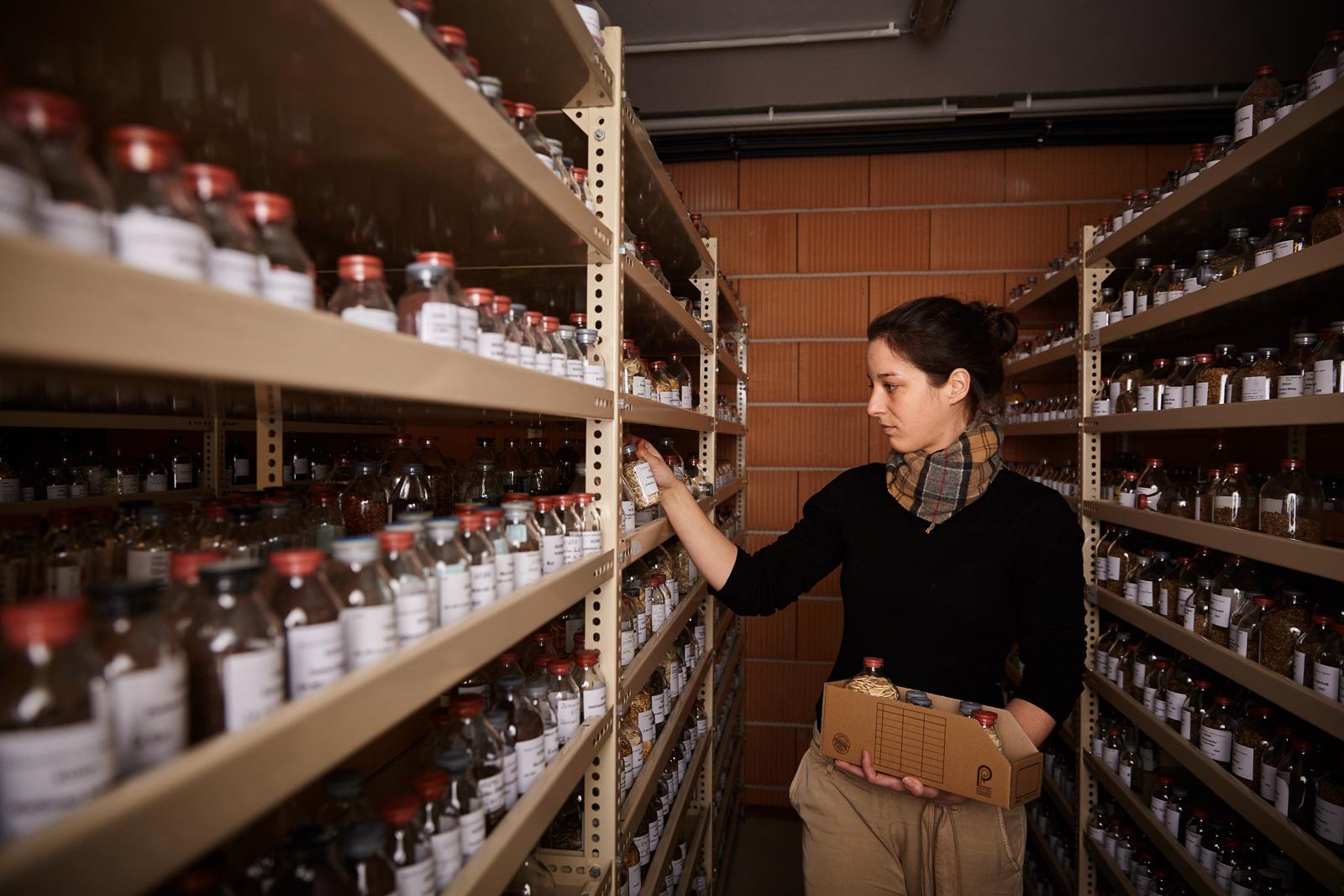 Saatgutflaschen im Samenarchiv