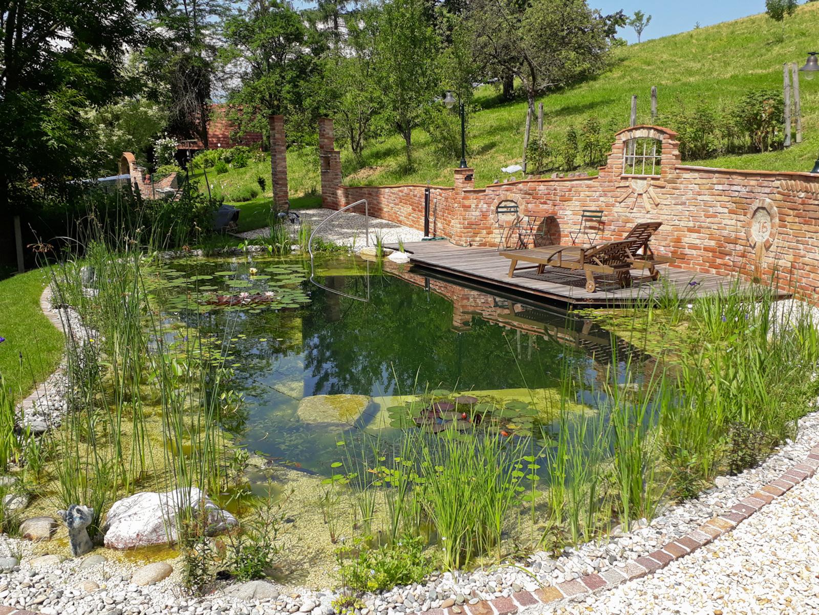 Im Schwimmteich ist die Hälfte der Fläche für Pflanzen reserviert.