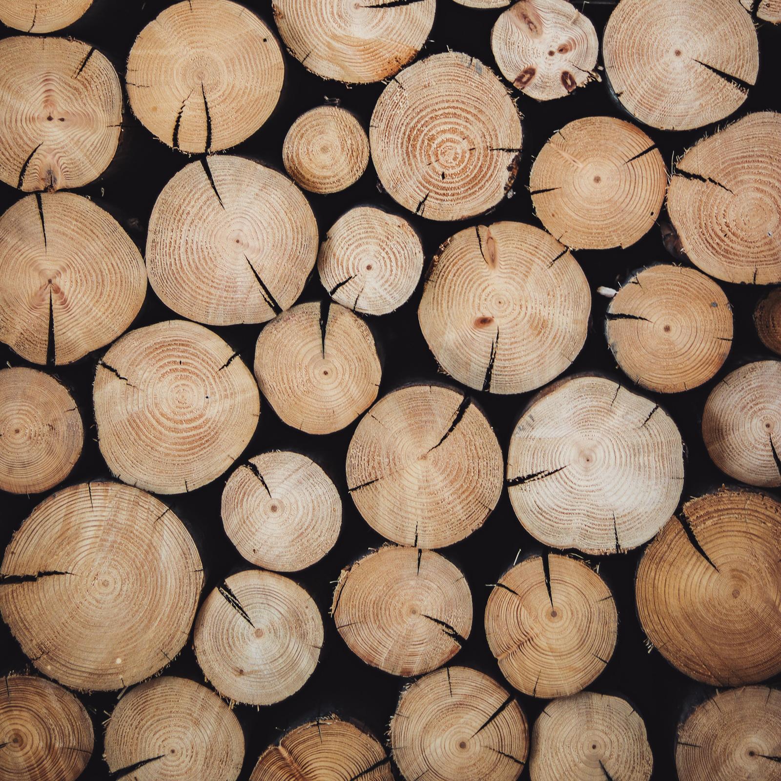 Lignin wird aus Holz gewonnen.