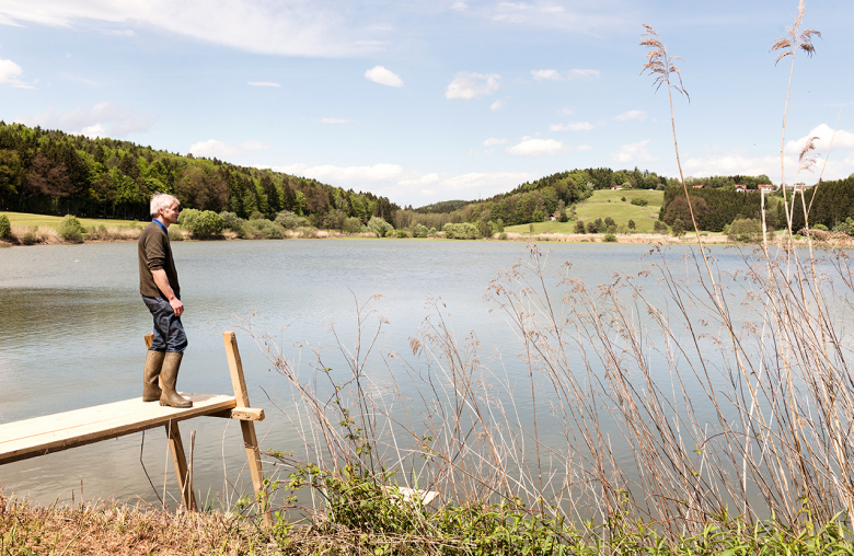 Zum Gut in der Südweststeiermark gehört ein eigener Badesee