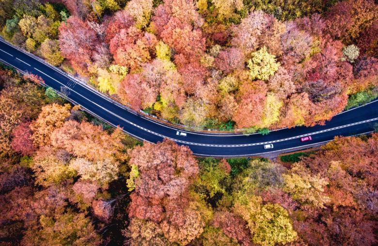 Der Herbst bringt tolle Farben mit sich. Für Autofahrer aber wird es nun tückisch. Sie müssen nun besonders vorsichtig fahren.