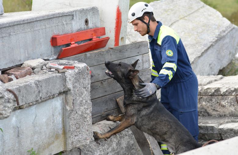 In der Ausbildung wird den Hunden beigebracht, bei liegenden Personen so lange zu bellen, bis sie vom Einsatzleiter den Befehl bekommen, aufzuhören.