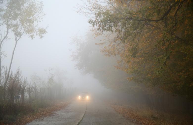Schlechte Sicht: Bei Nebel solltest du runter vom Gaspedal.