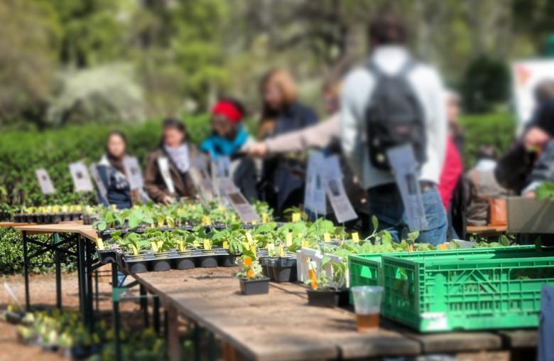 """Ein Garten macht viel Arbeit und bringt beinahe das ganze Jahr über Ertrag. <br>[Bild: © <a target=""""_blank"""" href=""""http://www.garteling.at"""">garteling Gartenblog</a>]"""