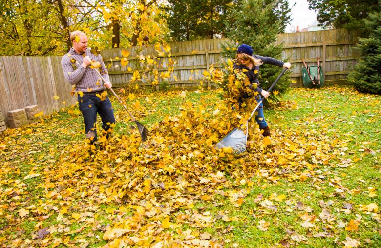 Laub im Herbst sollte nicht kompostiert, sondern zu einem Haufen aufgetürmt werden: Dieser hilft dem Igel wortwörtlich beim einigeln.