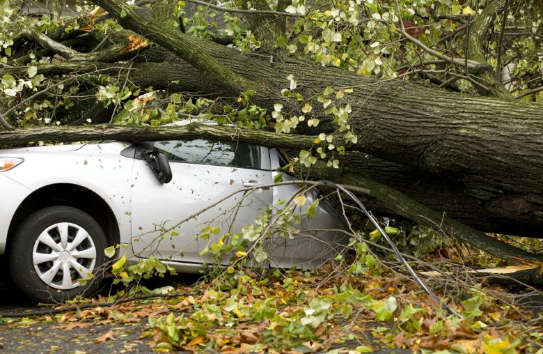 Jährlich richten rund ein Dutzend Gewitterfallböen mit Orkanstärke Schäden an.