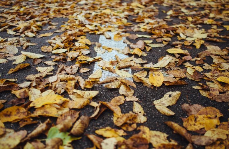 Vorsicht: Laub und Regen können zu einer gefährlichen Rutschpartie führen.