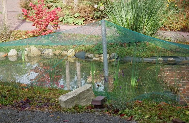 Atemberaubend Klar wie ein Bergsee: Der selbstregulierende Gartenteich &XV_58