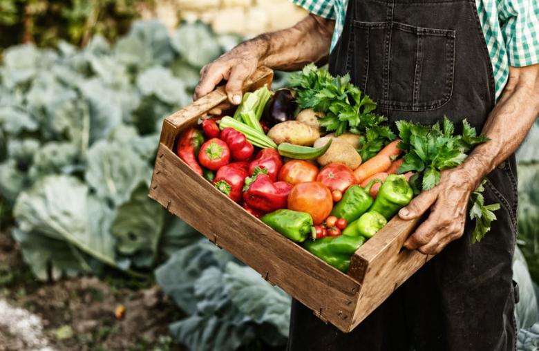 Der Kern der Slow-Food-Philosophie basiert auf nachhaltigen, natürlichen Produkten aus der Region, mit Qualität, Authentizität und Geschichte.
