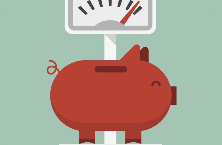 Spareinlagen dienen der Vermögensansammlung, also dem Ansammeln eines Geldpolsters über einen langen Zeitraum hinweg.