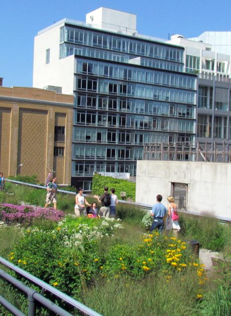 Der High Line Park in New York bietet Natur auf einer alten Schienentrasse.